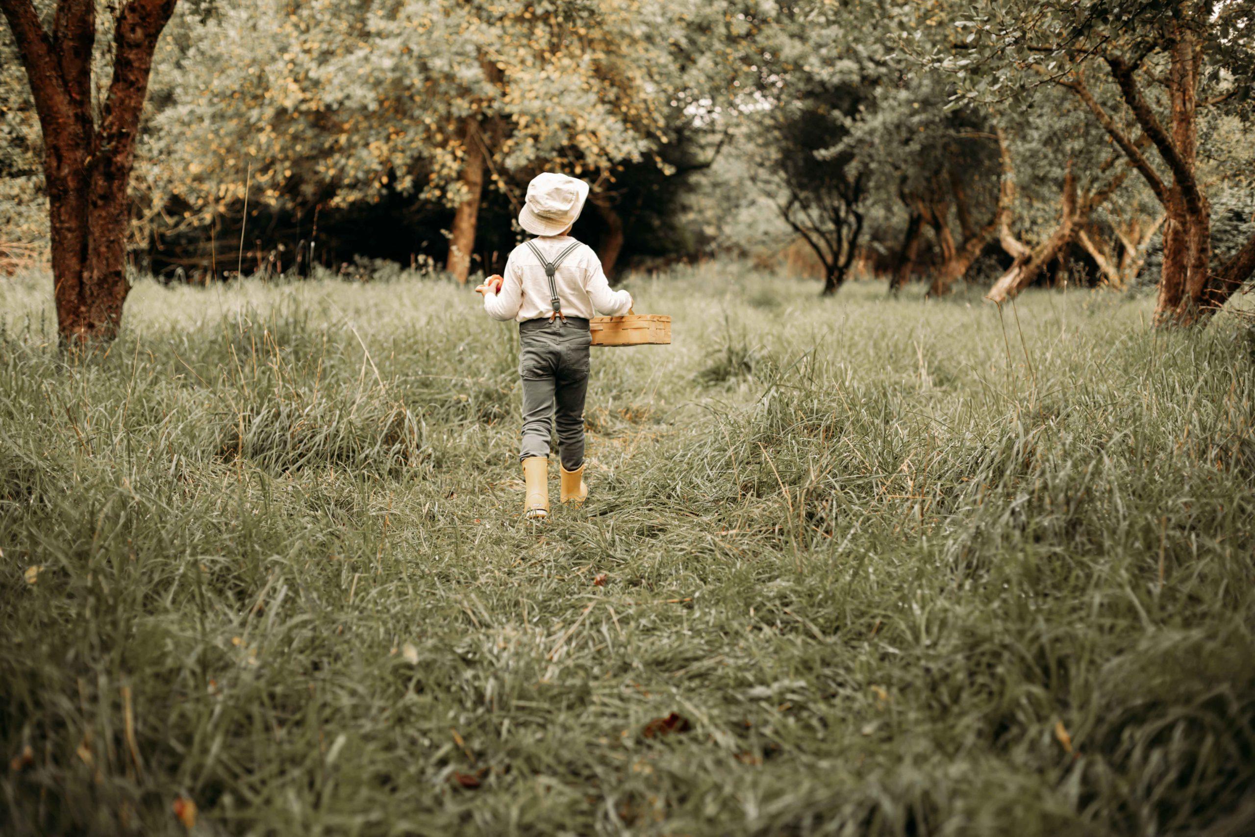 Kindershooting, Portrait, Fotos, Kind, Kleinkind, Outdoorshooting, Obstwiese, Äpfel pflücken, Familienfotograf, Fotograf Emden, Aurich, Leer